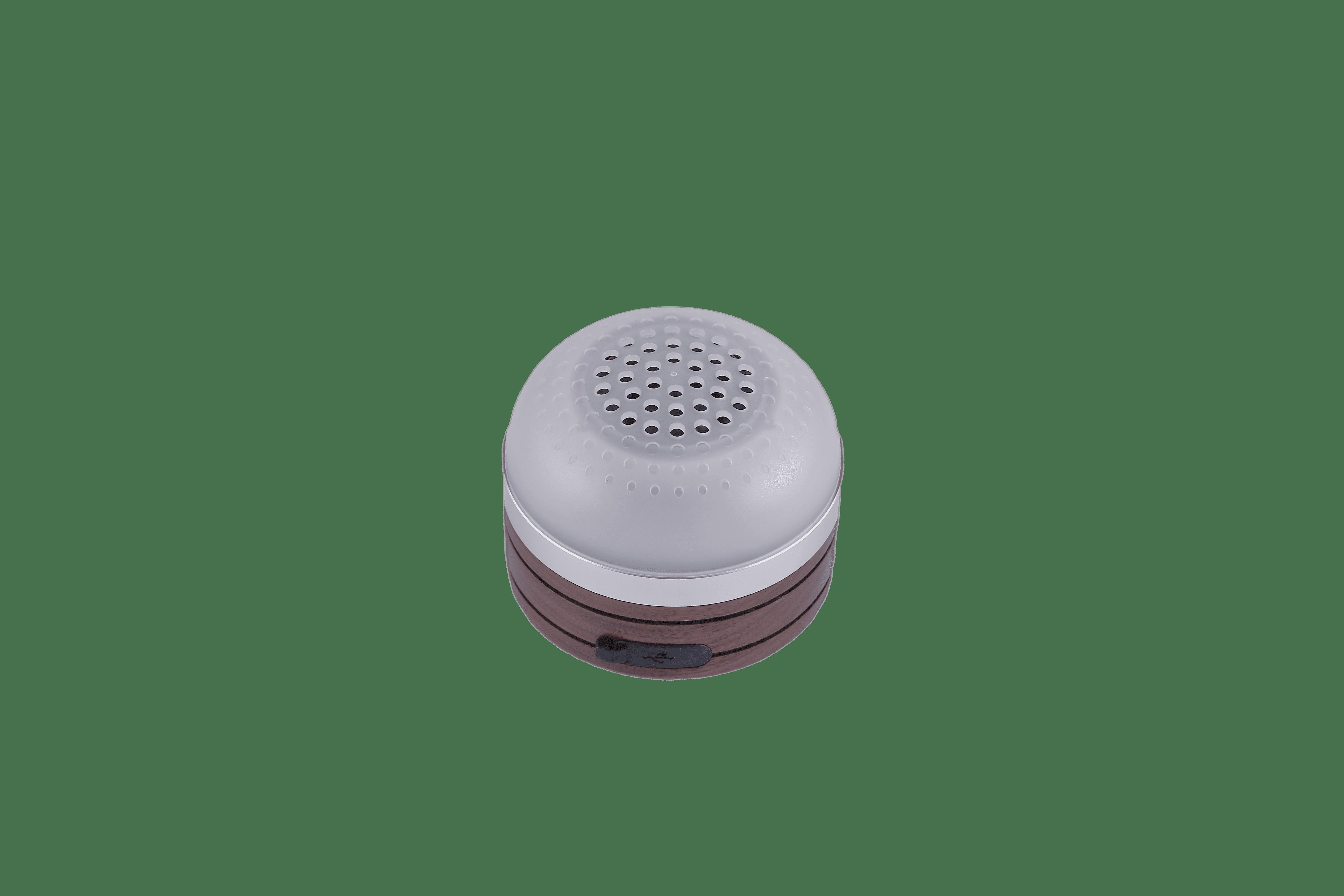 Roussy speakerlamp