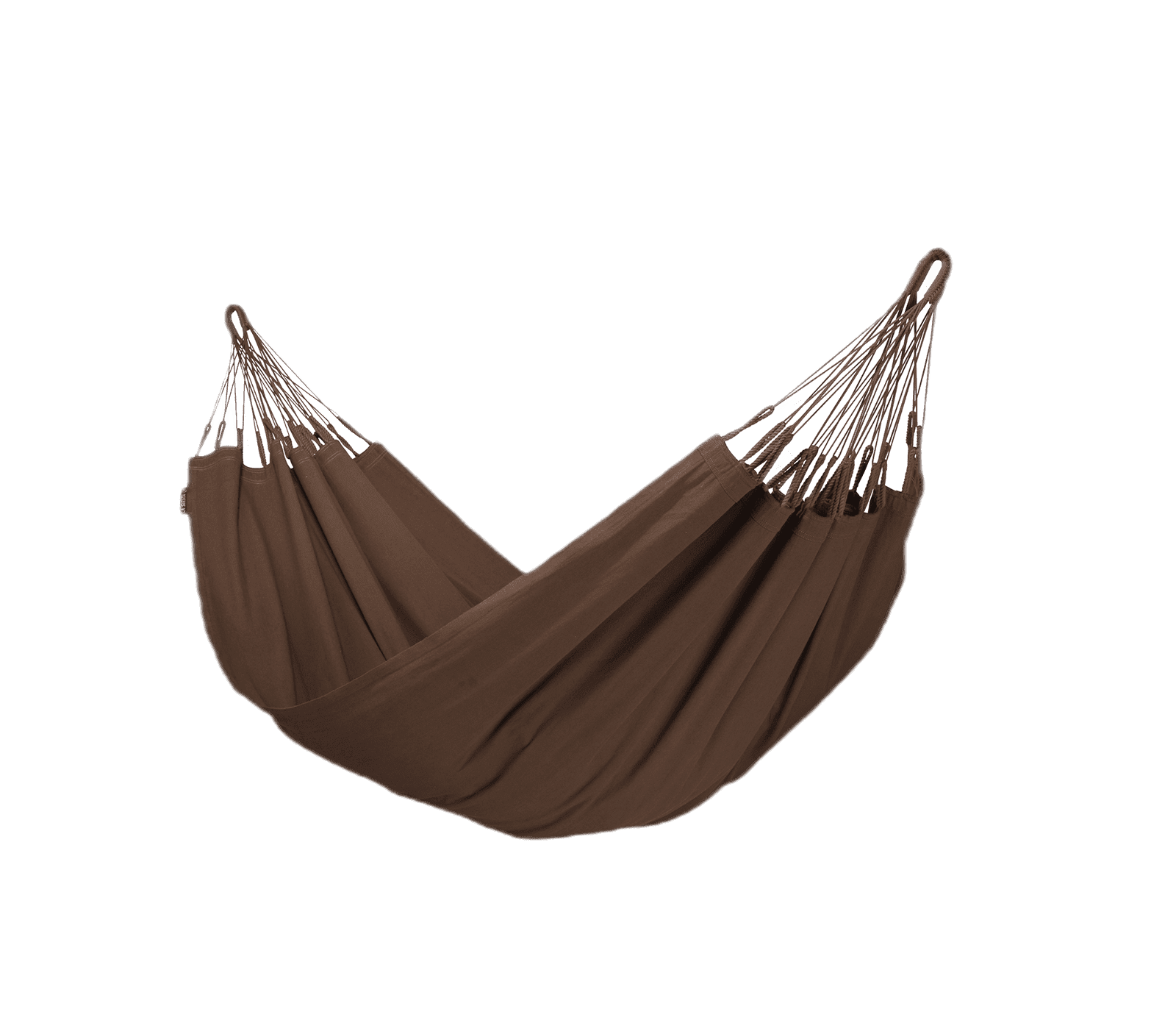 Hangmat modesta (arabica)